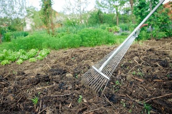 Entretien de jardin : le point sur tous les outils indispensables ...