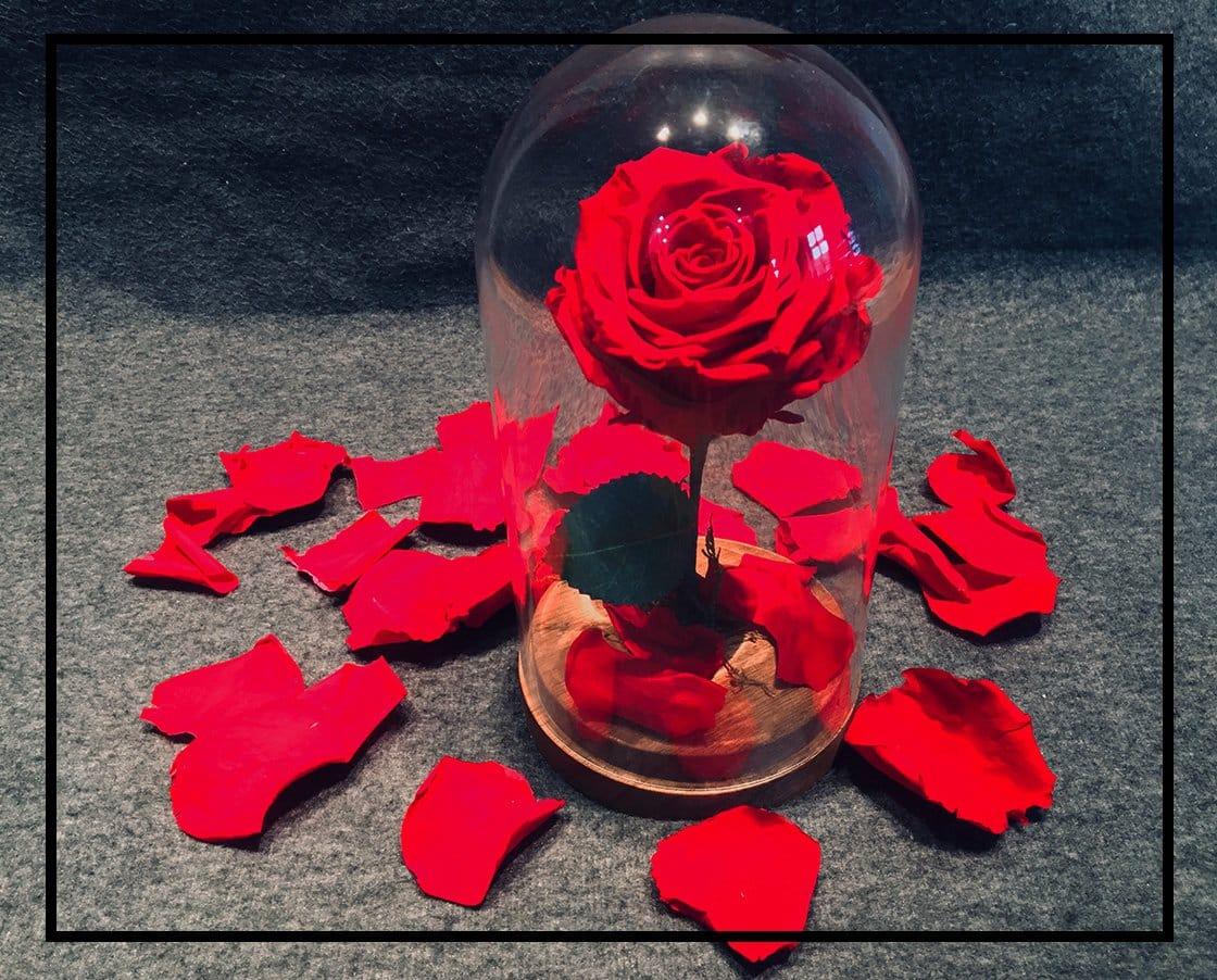 qu 39 est ce qu 39 une rose ternelle et quels sont ses avantages. Black Bedroom Furniture Sets. Home Design Ideas