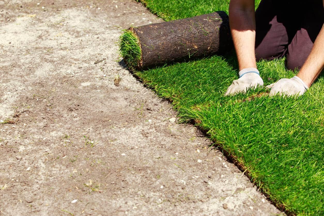Astuces pour aménager un jardin