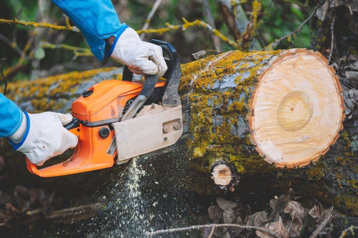 Réparer une tronçonneuse qui coupe mal
