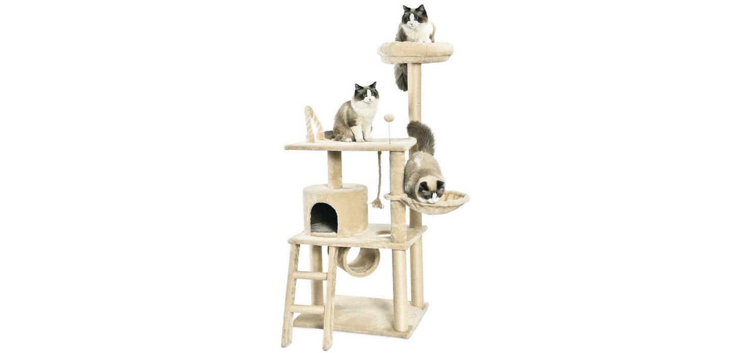 Meilleur arbre à chat Amazon