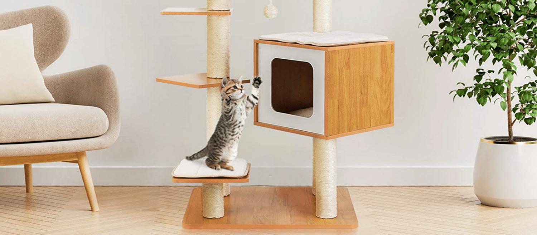 Meilleur arbre à chat