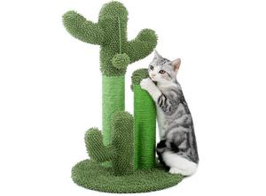 Test et avis sur l'arbre à chat cactus Pawz Road