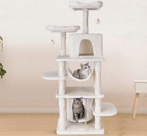 Test et avis sur l'arbre à chat géant Pedy