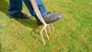 outils à posséder pour un bon entretien de son jardin