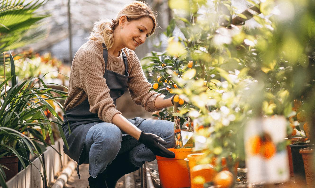 Astuces de jardinier